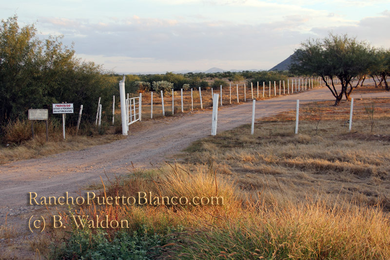 The entrance to Rancho Puerto Blanco